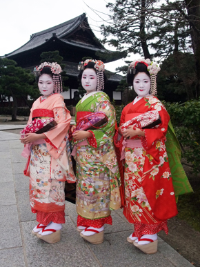 Japanese culture,Maiko,舞妓